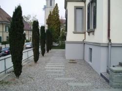 EFH_Kantstrasse_zurich-gartenbau_01