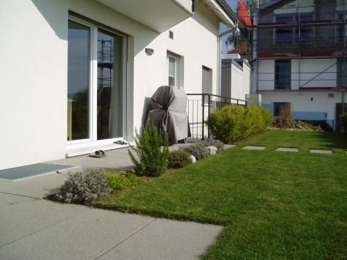 Gartenbau-EFH-Herrengüetlistrasse-Wallisellen-02