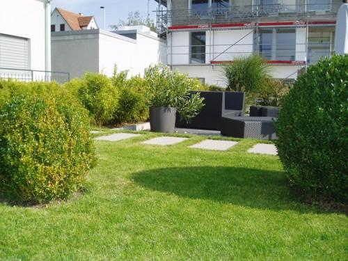 Gartenbau-EFH-Herrengüetlistrasse-Wallisellen-05