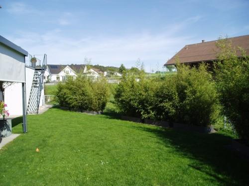 gartnebua_EFH-Randenblick-Winterthur_01